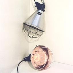 Protecteur de lampe